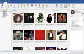 Music Database Software
